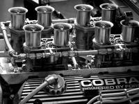 V8 Cobra
