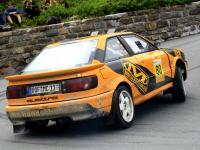Rallyelegenden172.JPG