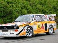 Rallyelegenden89.JPG