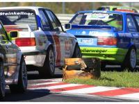 BMW-325-Challenge-Histo-Cuo-(119)