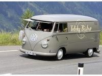 VW-Bulli-Treffen-2010-(113)