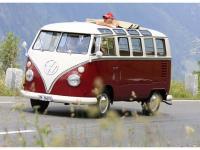 VW-Bulli-Treffen-2010-(118)