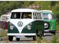 VW-Bulli-Treffen-2010-(132)