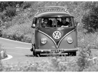 VW-Bulli-Treffen-2010-(138)