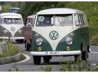 VW-Bulli-Treffen-2010-(146)