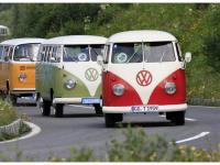 VW-Bulli-Treffen-2010-(150)