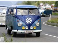 VW-Bulli-Treffen-2010-(173)